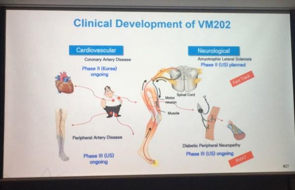 VM202의 치료개발 현황