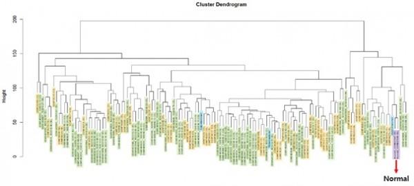 [그림 4] 망막모세포종 관련 수집 데이터의 군집분석 결과