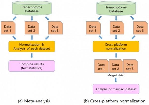 [그림 5] 바이러스 유도 iPSC와 단백질 유도 iPSC의 전사체 통합 분석 방법