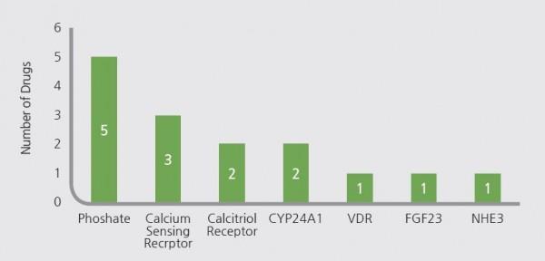 CKD-MBD 약물 개발 주요 타깃