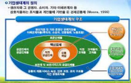 그림1. 기업생태계의 정의(출처: 김기찬 교수)